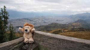 Lion auf dem Cruz Loma